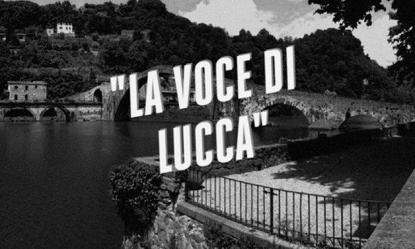 """RASSEGNA POST """"LA VOCE DI LUCCA"""" 11/8/16. da Piana, Valserchio e Versilia."""